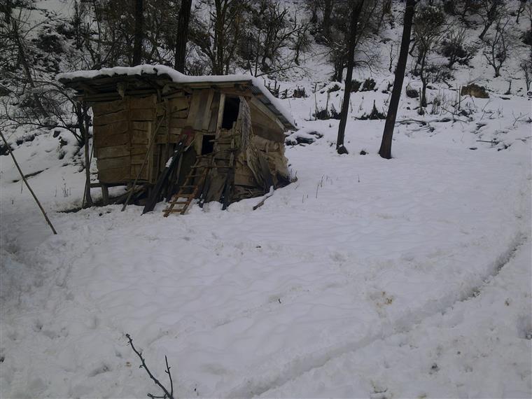 زمستان گیلان